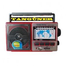 Gold HTC 3030 Radyo Müzik Çalar